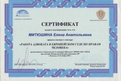 """Сертификат """"Работа адвоката в Европейском суде по правам человека"""""""